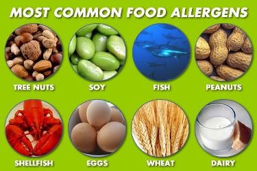 What Are Major Food Allergens?