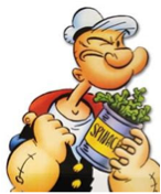 This is a picture of a cartoon man holding a can of spinach