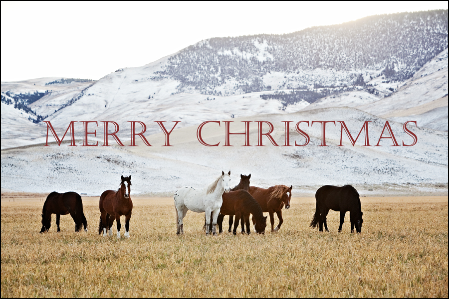 Merry Christmas From HCR!