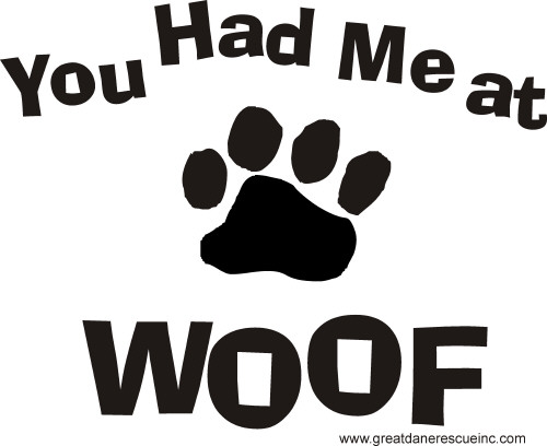 Grey You had me at woof t-shirt - XL