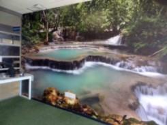 Custom Wall Mural Printing ProGraphix Austin TX