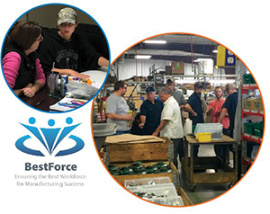 WCI introduces BestForce