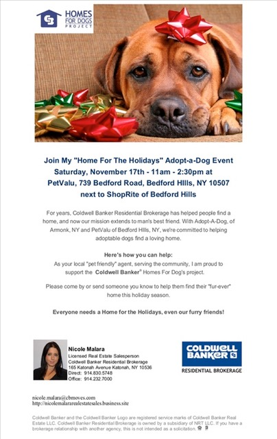 "Coldwell Banker ""Home For The Holidays"" Adoption Event"