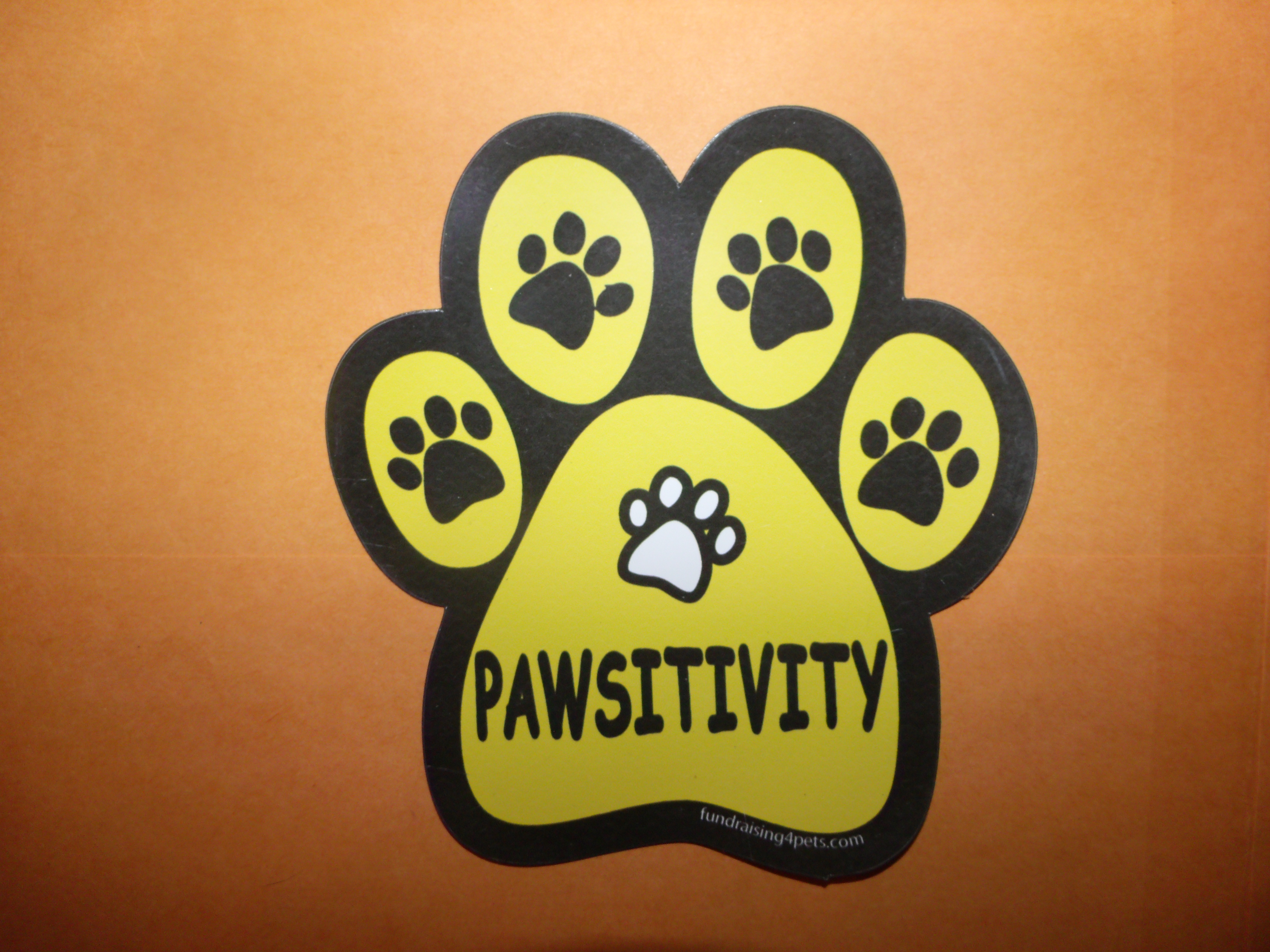 Pawsitivity, Paw Print