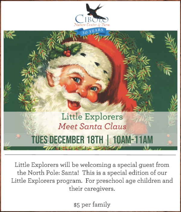 CNC: Little Explorers - Evergreen Trees! SPECIAL EDITION