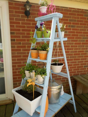 Use an old ladder from Goodwill to create a vertical garden.