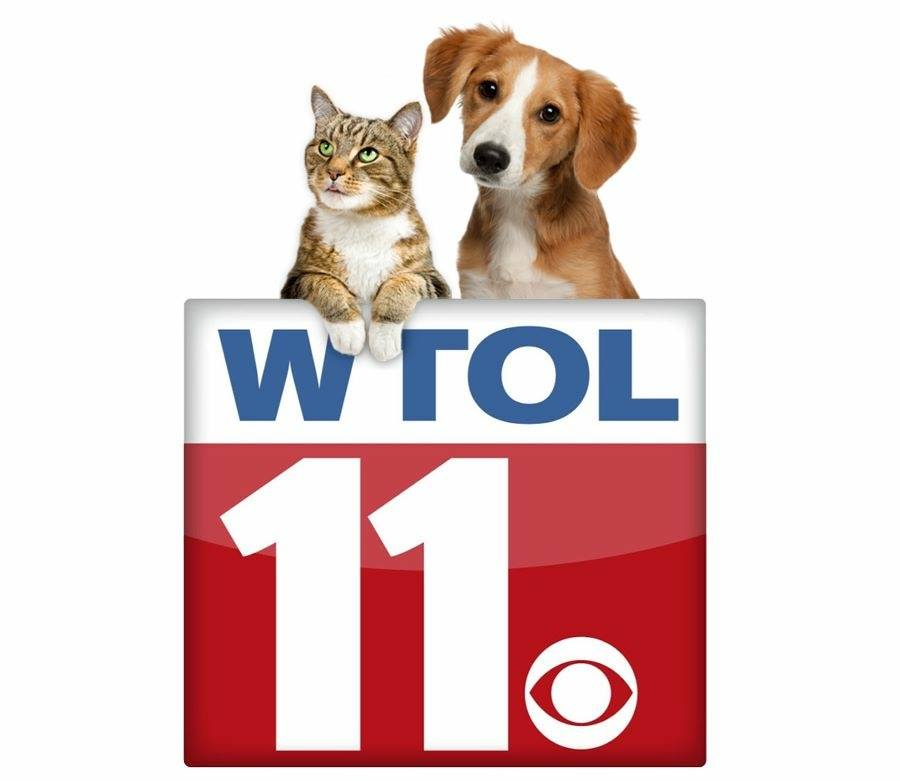 Toledo Animal Rescue on WTOL's Your Day